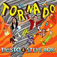Cover Tiësto & Steve Aoki - Tornado