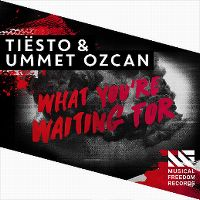 Cover Tiësto & Ummet Ozcan - What You're Waiting For