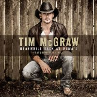 Cover Tim McGraw feat. Faith Hill - Meanwhile Back At Mama's