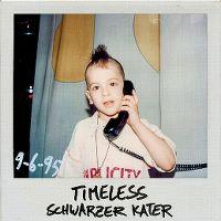Cover Timeless - Schwarzer Kater