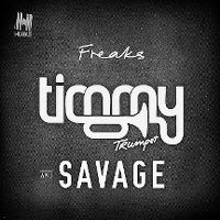 Cover Timmy Trumpet & Savage - Freaks