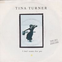 Cover Tina Turner - I Don't Wanna Lose You