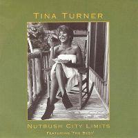 Cover Tina Turner - Nutbush City Limits