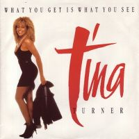 Cover Tina Turner - What You Get Is What You See
