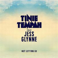 Cover Tinie Tempah feat. Jess Glynne - Not Letting Go