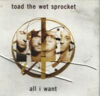 Cover Toad The Wet Sprocket - All I Want