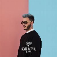 Cover Todiefor feat. Helen - Never Met You