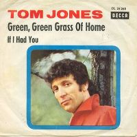 Cover Tom Jones - Green, Green Grass Of Home