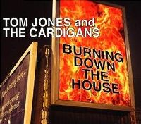Cover Tom Jones and The Cardigans - Burning Down The House