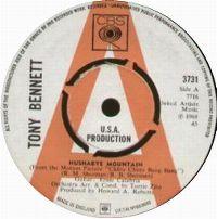 Cover Tony Bennett - Hushabye Mountain