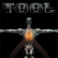Cover Tool - Salival