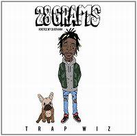 Cover Trap Wiz - 28 Grams