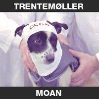 Cover Trentemøller feat. Ane Trolle - Moan