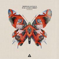 Cover Tritonal & Jenaux feat. Adam Lambert - Broken