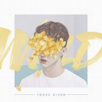 Cover Troye Sivan - Wild