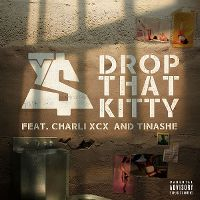 Cover Ty Dolla $ign feat. Charli XCX and Tinashe - Drop That Kitty