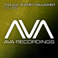 Cover TyDi feat. Audrey Gallagher - Calling