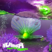 Cover Ufo361 feat. RAF Camora - Nummer