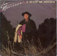 Cover Van Morrison - A Sense Of Wonder