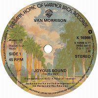 Cover Van Morrison - Joyous Sound