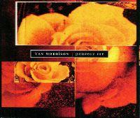 Cover Van Morrison - Perfect Fit