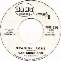 Cover Van Morrison - Spanish Rose