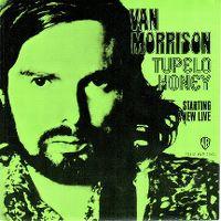 Cover Van Morrison - Tupelo Honey
