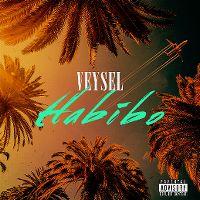 Cover Veysel - Habibo