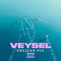 Cover Veysel - Pelican Fly