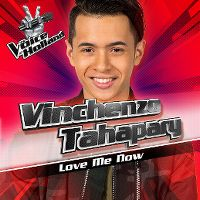 Cover Vinchenzo Tahapary - Love Me Now