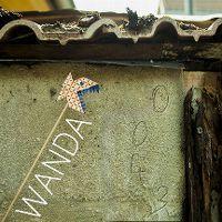 Cover Wanda - 0043