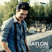 Cover Waylon - Wicked Ways