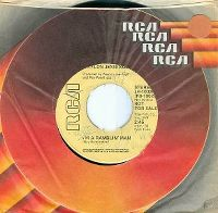 Cover Waylon Jennings - I'm A Ramblin' Man