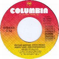 Cover Waylon Jennings / Willie Nelson / Johnny Cash / Kris Kristofferson - Silver Stallion