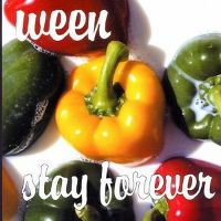 Cover Ween - Stay Forever