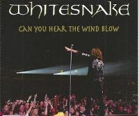 Cover Whitesnake - Can You Hear The Wind Blow