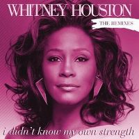 Cover Whitney Houston - I Didn't Know My Own Strength