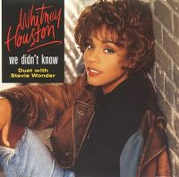 Cover Whitney Houston & Stevie Wonder - We Didn't Know