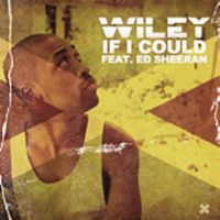 Cover Wiley feat. Ed Sheeran - If I Could