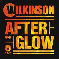 Cover Wilkinson - Afterglow