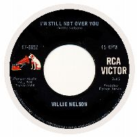 Cover Willie Nelson - I'm Still Not Over You