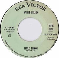Cover Willie Nelson - Little Things