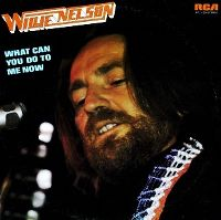 Cover Willie Nelson - What Can You Do To Me Now
