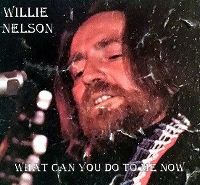 Cover Willie Nelson - What Can You Do To Me Now?