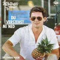 Cover Wolfgang Ambros - Du verstehst mi ned