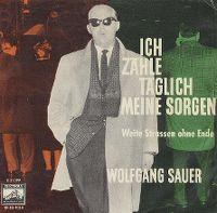 Cover Wolfgang Sauer - Ich zähle täglich meine Sorgen