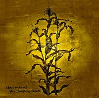 Cover Wovenhand - The Laughing Stalk