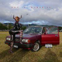 Cover YG feat. DJ Mustard - Pop It, Shake It