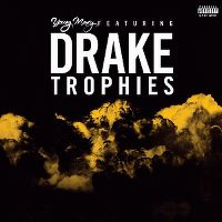 Cover Young Money feat. Drake - Trophies