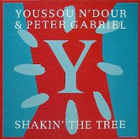 Cover Youssou N'Dour & Peter Gabriel - Shakin' The Tree